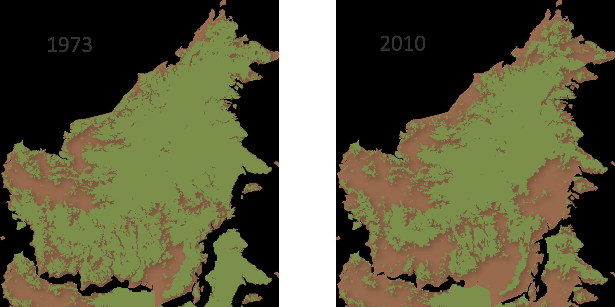 Ontbossing op Borneo tussen 1973 en 2010 | © Gaveau, D. e.a. (2014)