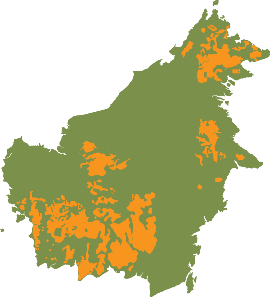 Vooral het leefgebied van de Centraal-Borneose orang-oetan (Pongo p. wurmbii) in het zuidwesten van Borneo is sterk versnipperd | WNF, 2004