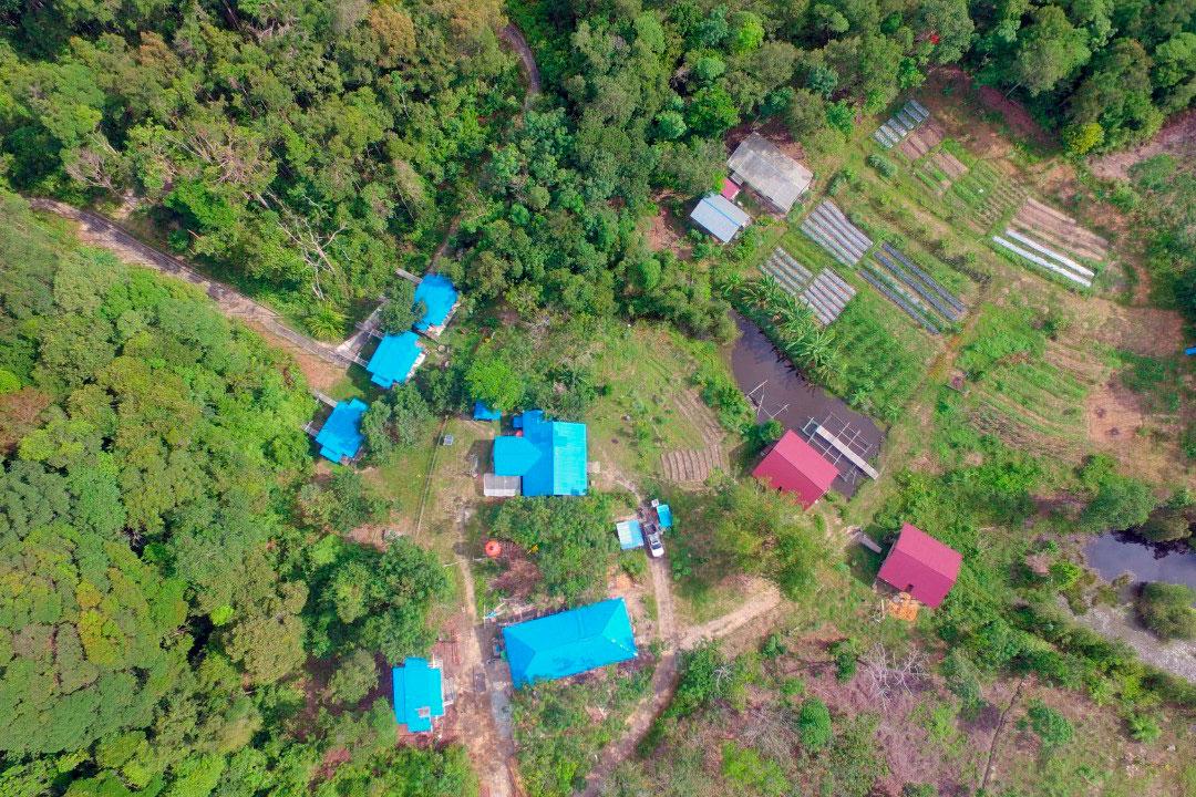 Rehabilitatiecentrum van het SOC in Jerora. Links is de rand  van het het oefenbos te zien. | © SOC