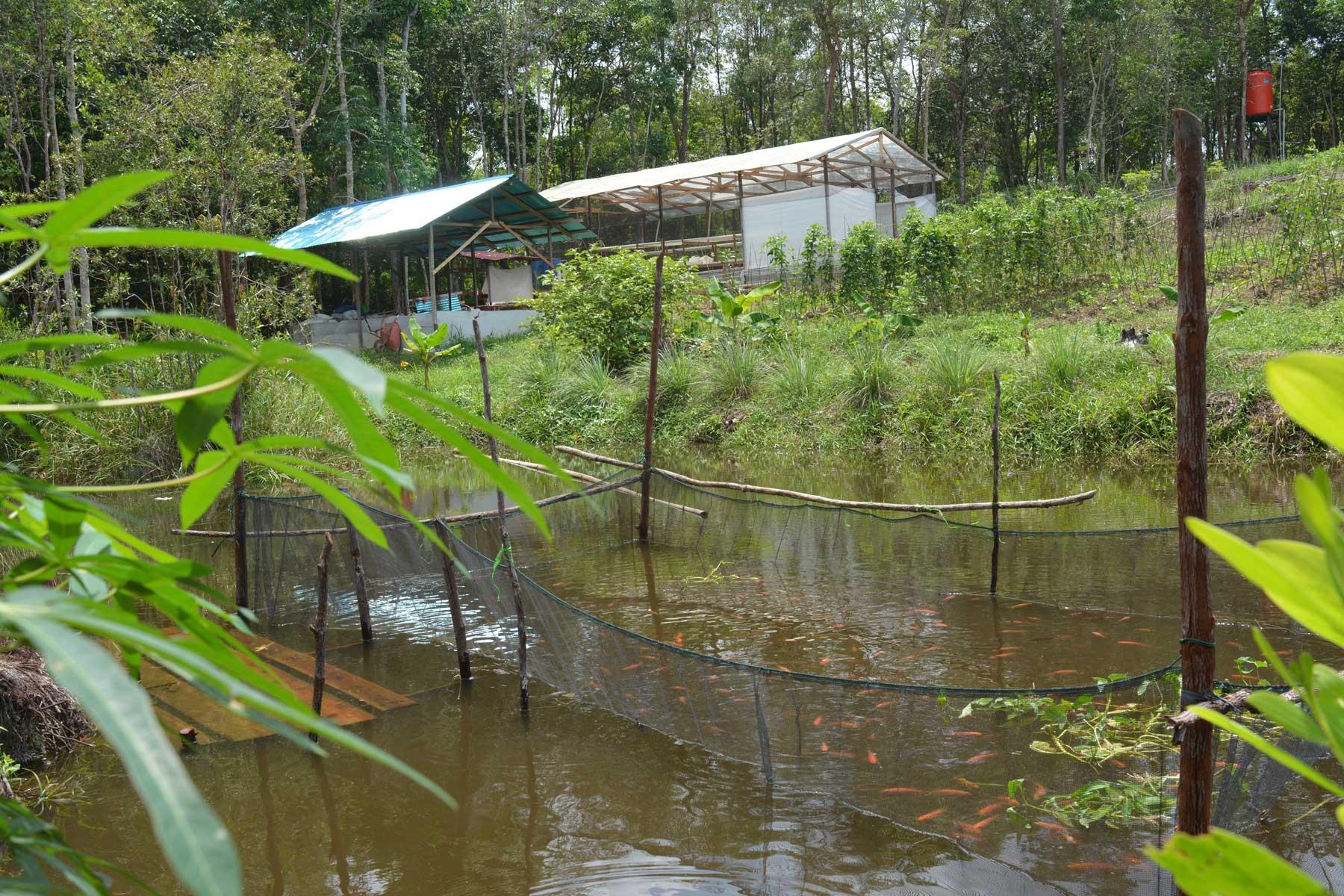 Biologische tuin met kassen in Jerora. Op de voorgrond een visvijver | © Hugo Wortel