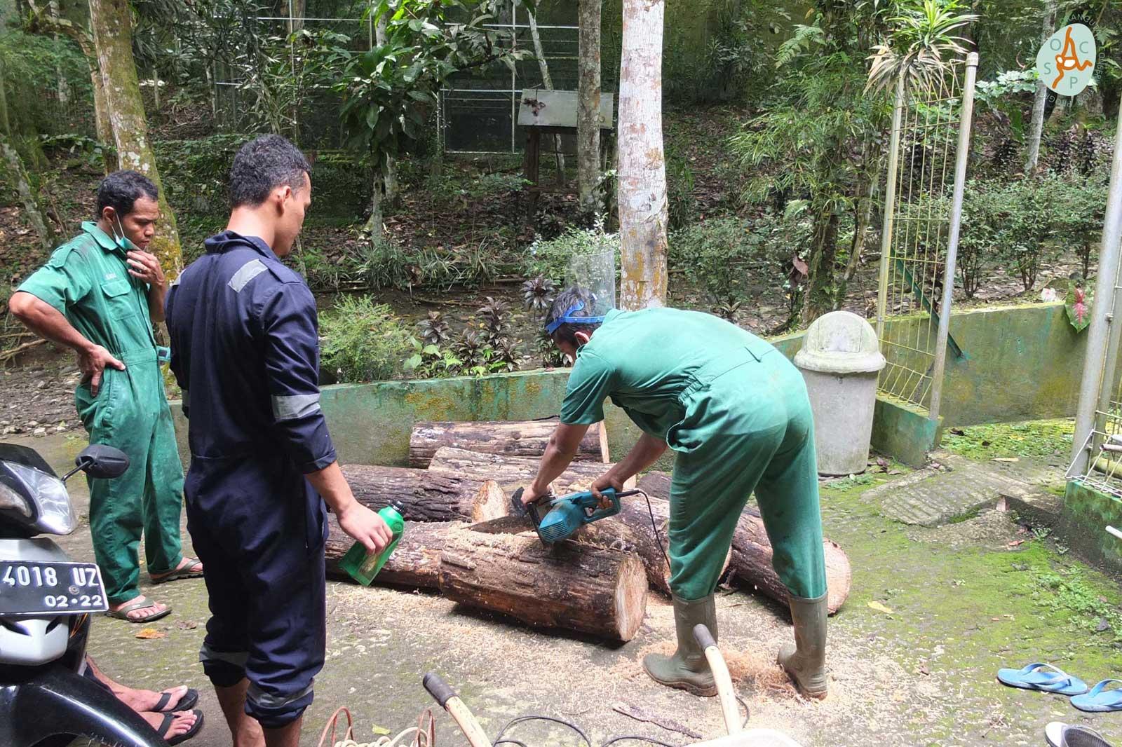 De verzorgers maken verrijkingsmateriaal van boomstammen | © SOCP
